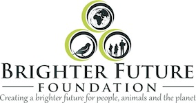 Brighter Future Foundation, Inc.